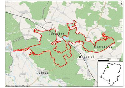 Lasy Barucickie, źródło: RDOŚ Opole