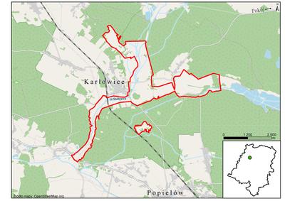 Łąki w okolicach Karłowic, źródło:RDOŚ Opole